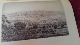 Percy Smith Palestine (12)
