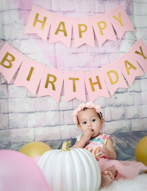 Baby Girl One Year Cake Smash Pink Flower Dress Sitting
