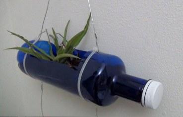 Jardinería reciclando botellas de plástico. Rosa Montesa