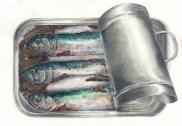 Sardine Portrait, Watercolor on paper collage