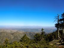 Mount Baldy - at about 8,500 feet