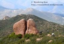 Split Rock along the Backbone Trail