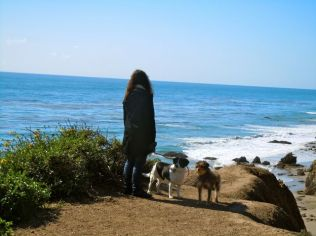 Debbie and the dogs at the top of the cliff