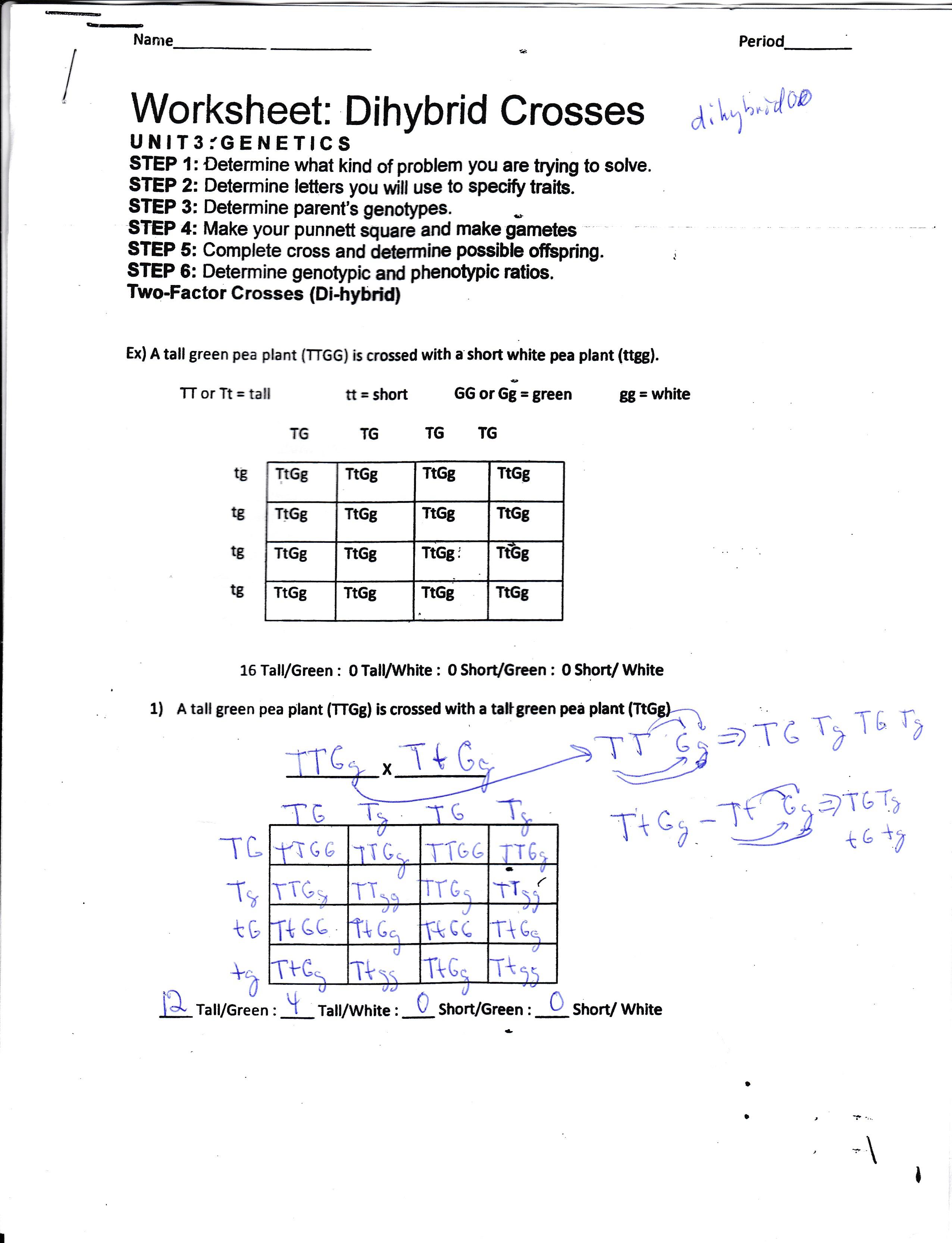 Algebra Homework Page