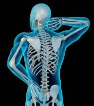 Pain Skelton
