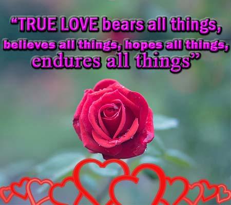 05/03/2017· y qué mejor manera de demostrar este afecto inquebrantable que con unas bonitas palabras en inglés. Imagenes De Rosas Con Frases De Amor En Ingles Rosas De Amor