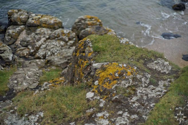 east-lothian-coast-walk-5