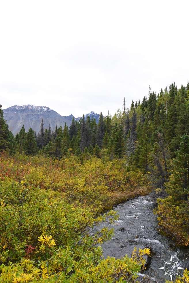 Roadtrip-Kanada-Alaska-Rosas-Reisen-Wanderung-Auriol-Trail