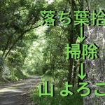 当サイトの記事「落ち葉拾いで山の環境保全のお手伝いをしています」用のアイキャッチ