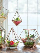 Terrariums // Rose Kiwi / Blog déco & DIY, mais pas que... / rose-kiwi.com