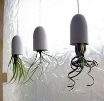Air Planting // Rose Kiwi / Blog déco & DIY, mais pas que... / rose-kiwi.com