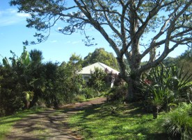 Main House - Drive Way