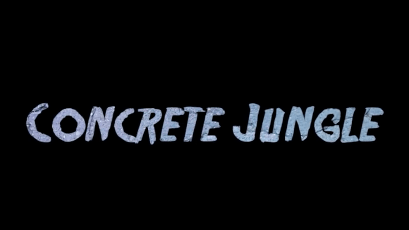 "TF ""Concrete Jungle"" Prod. Shea Wooten (Video)"