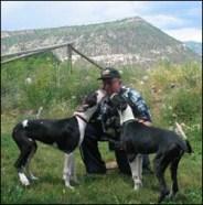 Maisie & Cleo with Sam Rose, breeder.