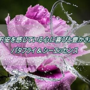 バラの香りで心の疲れをやさしく癒す「ローズ・エリクシールミスト」