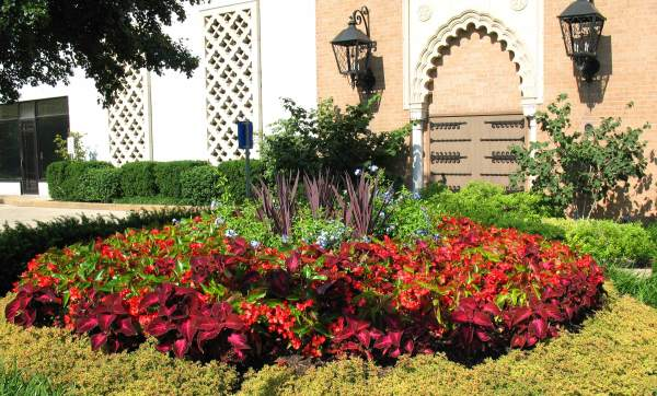 professional commercial landscaping