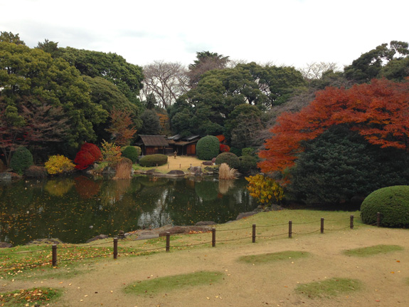 Garden grounds at the Tokyo National Museum
