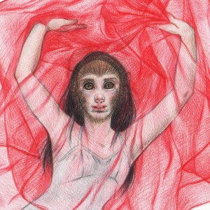 Salome (Year of the Monkey) - detail, Coloured pencil on paper, 14 x 17 inches, 2016