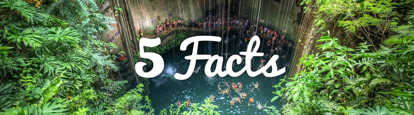 5 Facts about The Cenotes of Yucatán