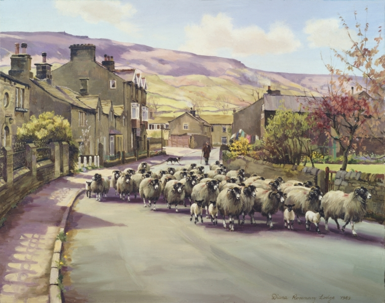 Sheep Paintings by Diana Rosemary Lodge