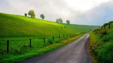 Green rural roads wallpaper