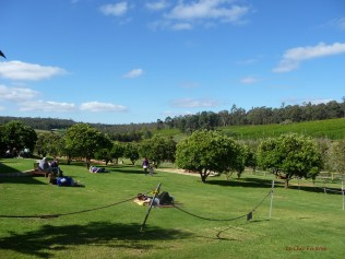 View across to the fruit orchards
