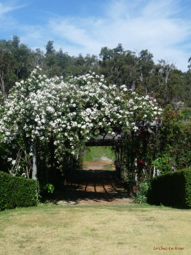 Easy to see why this is a popular wedding venue!