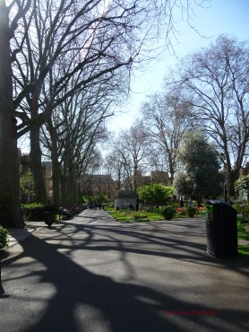 Spring sunshine in Paddington Street Gardens