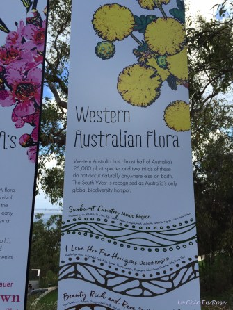 There is a huge range of bio diversity here in Western Australia - many rare species of flowers and plants are found in the south west corner of the state