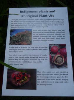 Details of some of the uses the local indigenous people have for the plants and flowers of the region