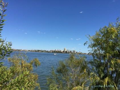 The beautiful River Swan