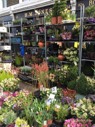 So many flowers to choose from!