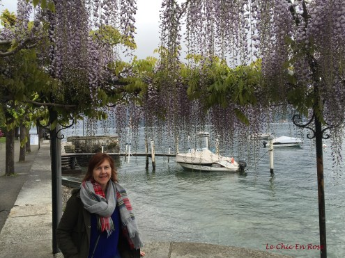 Wisteria By The Lake