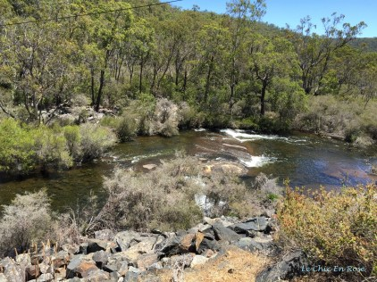 Collie River Near The Wellington Dam