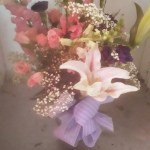 Flowers - thanksgiving
