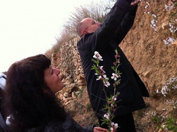 bigas luna y roser amills flores de almendro