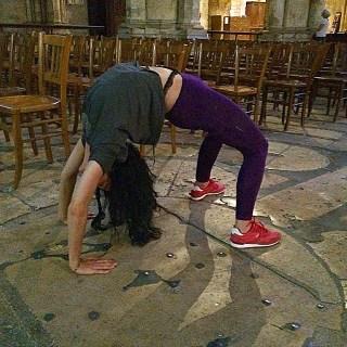 roser amills puente en la catedral de chartres
