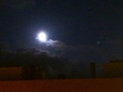"""""""El perro que ladra a la luna está plenamente convencido de que la luna lo oye."""" Valeriu Butulescu"""