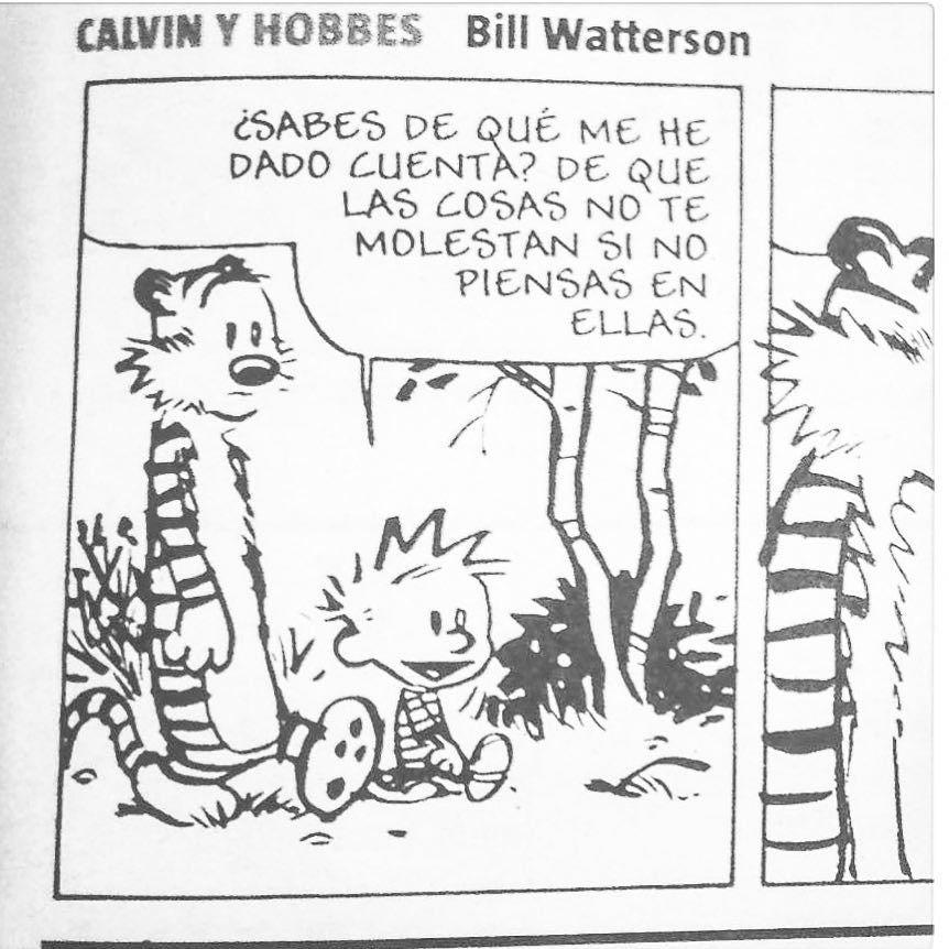Sabios consejos de #calvinandhobbes :))