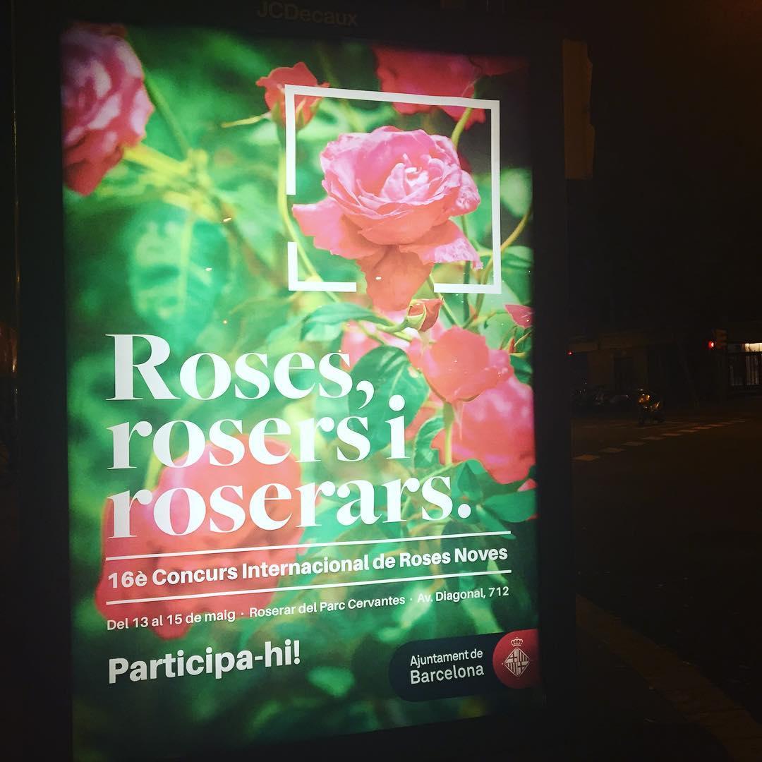 Anuncian la fiesta de las Rosers ;)) En viviendas del Congreso