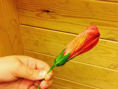 Tenemos flores y tenemos amor #regalodemipeque #haceilusion