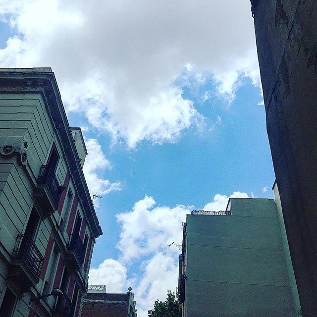 Con la descripción de las nubes debería darme mucha prisa, en una milésima de segundo dejan de ser ésas y empiezan a ser otras. #wislawaszymborska