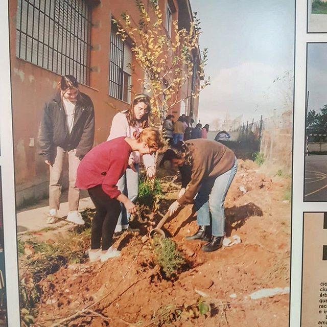Aquí me tenéis, con 14 tiernos añitos, rubia y con jersey rojo y leggins #madonnastyle, plantamos un árbol en el instituto :)) Esta foto tiene casi 30 años! Es #vintage del bueno, #vintage+10 #llucmajor #algaida #peredesongall