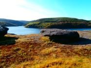 lyn brianne reservoir in Abergwesyn