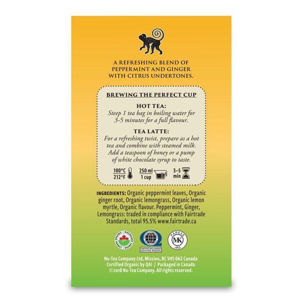 Ginger Mint herbal tea from Tega Organic Tea (fair trade, organic) on Rosette Fair Trade online store