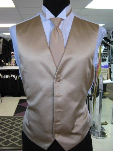 Full back vest and long tie