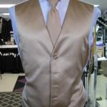 Full back vest and long tie