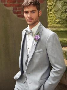 Light grey tuxedo