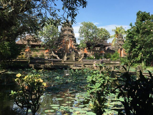 The Monkey forest, Ubud.