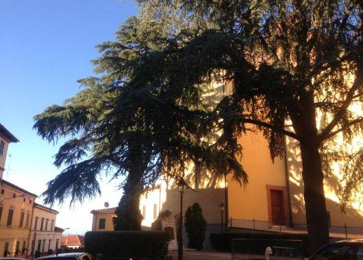 Sinalunga, una tarde de verano en la Toscana.